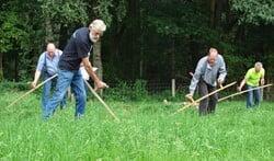 In Sinderen vindt een cursus maaien met de zeis plaats. Foto: PR