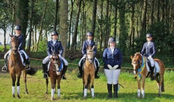 Regiokampioensviertal van ponyclub Gorssel-Zutphen. Foto: Willem Hamer