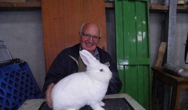 Lammert Blikman uit Ruurlo had het mooiste konijn met een witte Wener Foto: PR.