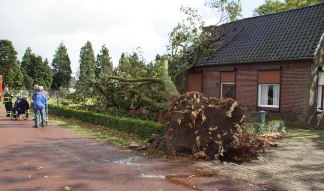 De boom richtte behoorlijke schade aan. Foto: News United/112 Achterhoek-nieuw