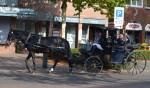 Het echtpaar Van Hamond-Dute arriveert na het ritje per koets bij Antoniushoeve. Foto: Lydia ter Welle