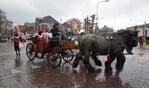 Sint arriveerde met paard en wagen. Foto: frank Vinkenvleugel