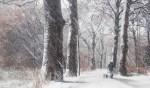 Schilderachtig winterlandschap. Foto: Burry van den Brink
