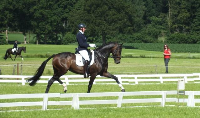 Zowel bij paarden en de pony's wordt gestart in alle klassen B , L ,M ,Z en ZZ ,in de dressuur. Foto: PR.