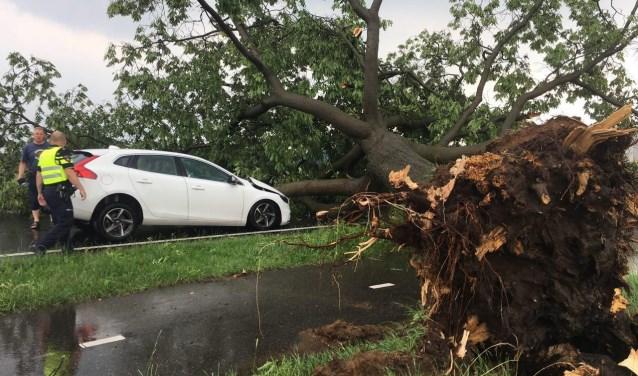 Auto beschadigd door omgevallen boom tijdens noodweer in Hengelo Gld. Foto: PR