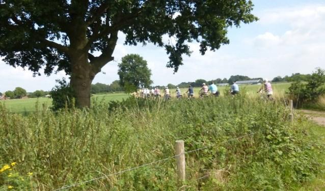 VVV organiseert fietstocht voor alleengaanden. Foto: PR