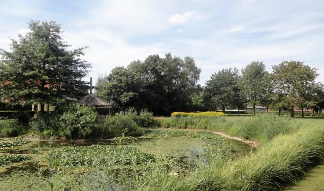 Een vijver op het prachtig aangelegde terrein van de familie Waenink. Foto: PR