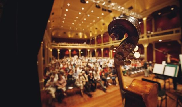 Het Cellofestival in de Buitensociëteit. Foto: Sunny Gardeur