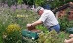 Imker Gert Hartman in de weer bij een bijenkast. Foto: PR
