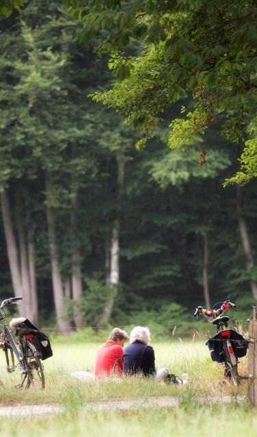 Van dinsdag 26 juni tot en met vrijdag 29 juni is het fraaie Winterswijkse buitengebied weer het domein van duizenden fietsliefhebbers tijdens de Internationale Fiets4daagse. Foto: Ron Rensink