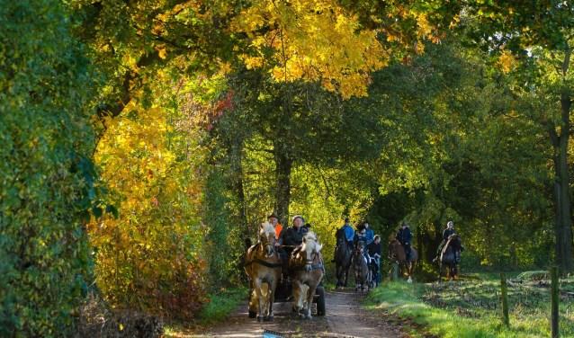 Mooie herfstrit door Aaltense omgeving. Foto: Gerben Olthof
