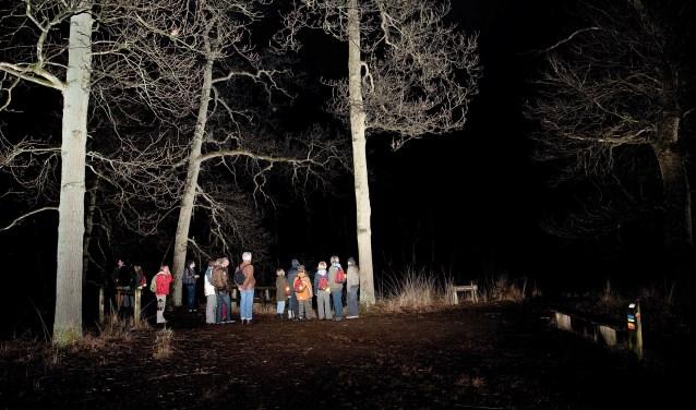Op stap met de nachtwachter in het bos. Foto: Peter de Krom