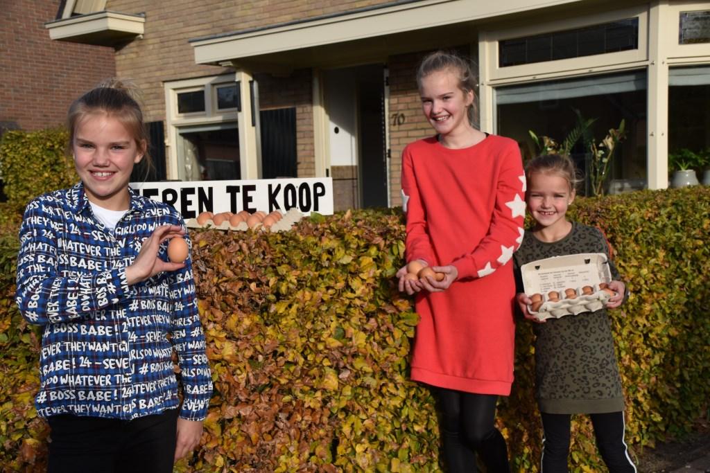 Verse eieren te koop bij Mirte, Bente en Lise. Foto: Alice Rouwhorst  © Achterhoek Nieuws b.v.
