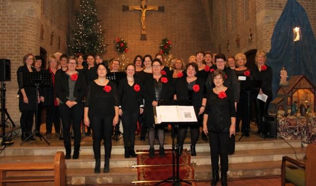 Het Dremptse koor Feeling. Foto: PR