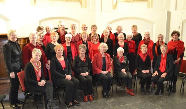 Het Overdagkoor zongt in de Catharinakerk. Foto: Jan Luesink