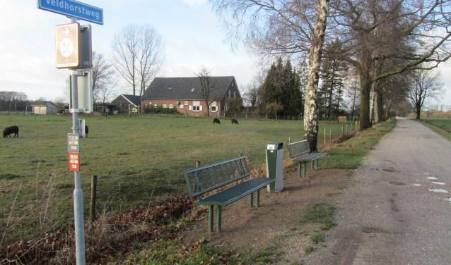 De twee bankjes in het Grote veld. Foto: Bernhard Harfsterkamp