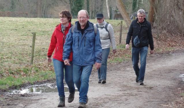 De wandelaars genoten van het prachtige coulisselandschap rondom Ruurlo Foto: Jan Hendriksen.