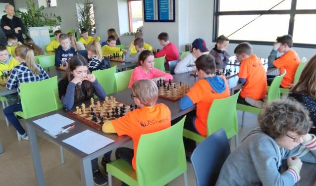 De jonge schakers geconcentreerd achter het bord. Foto: PR WSG