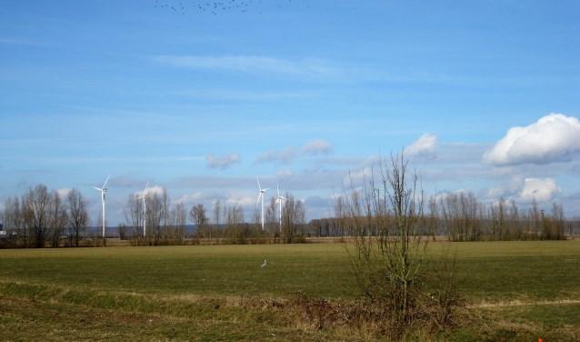 Windmolens: op verschillende plaatsen horen ze al bij het landschap. Foto: Clemens Bielen