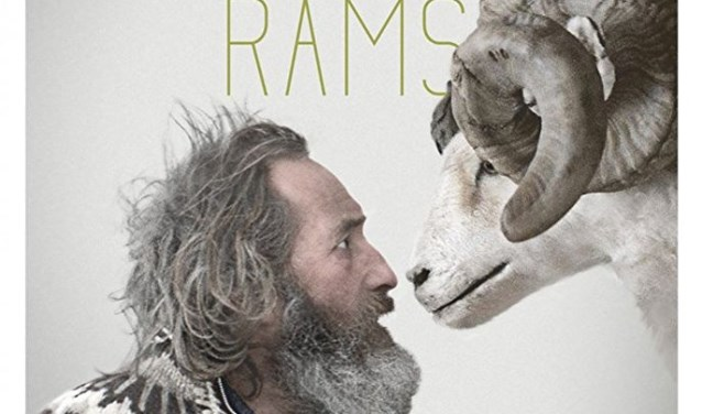 De film Rams in de Grote kerk in Halle. Foto: PR