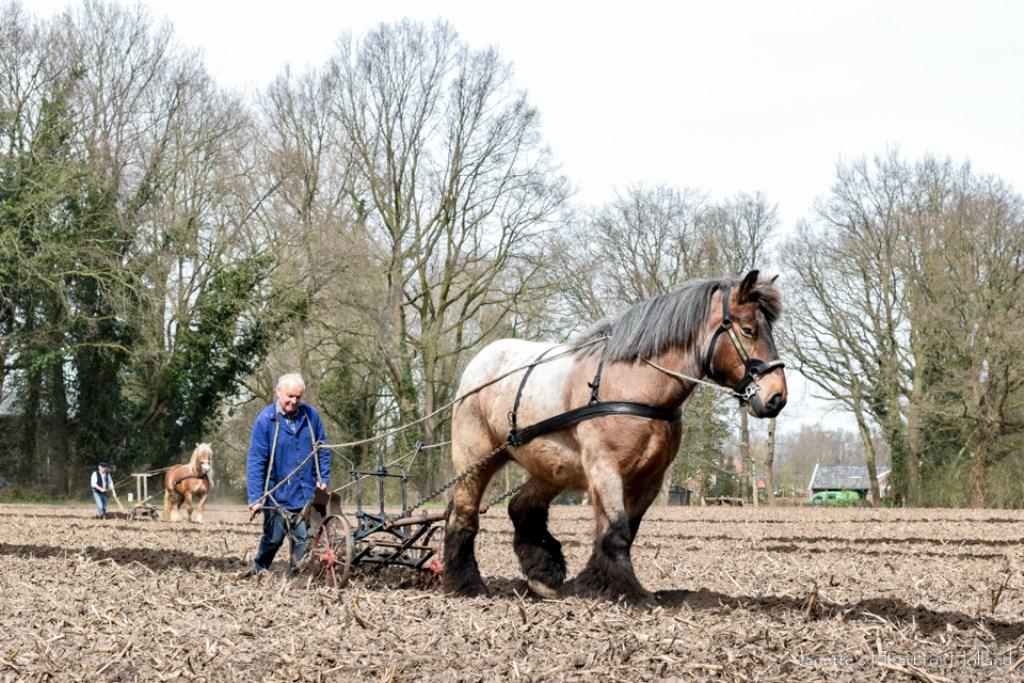 Samenwerking. Foto: Janette van Egten © Achterhoek Nieuws b.v.
