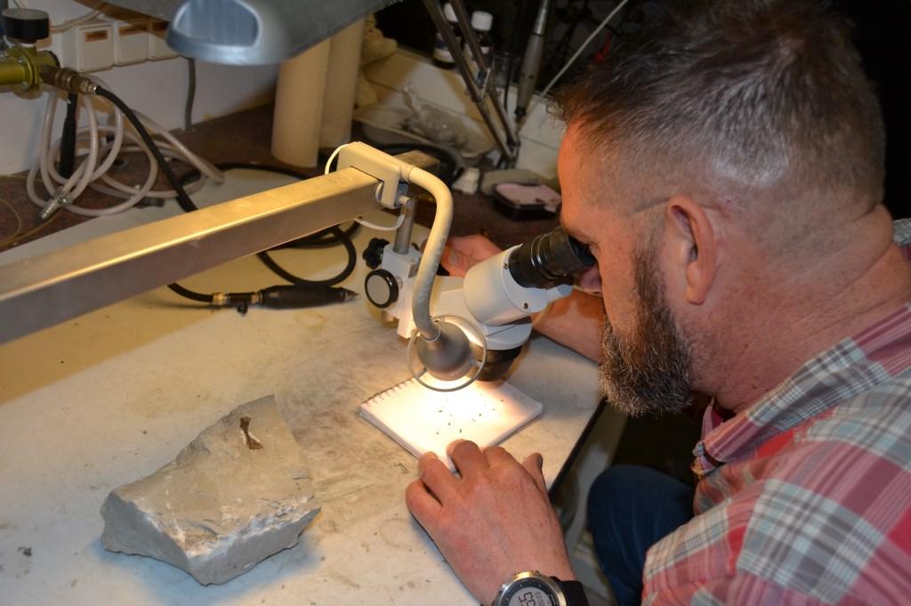 Amateurgeoloog Herman Winkelhorst bekijkt tandjes van 250 miljoen jaar oud.  © Achterhoek Nieuws b.v.
