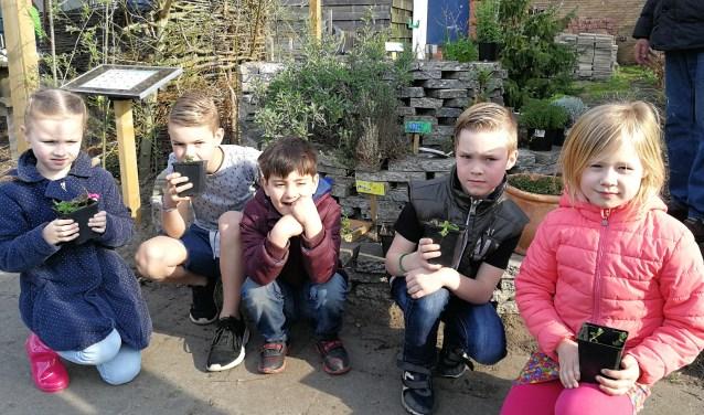 Leerlingen van de Dr. Ariëns Daltonschool bij de kruidencirkel in Moestuin De Berg. Foto: Rob Weeber