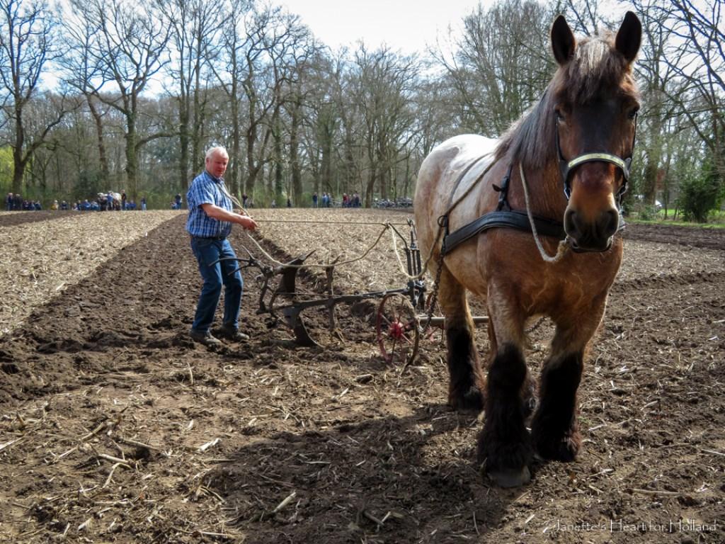 Steeds meer omgeploegd land Foto: Janette van Egten © Achterhoek Nieuws b.v.
