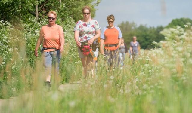 Achterhoekse Wandelvierdaagse, vlakbij sluizencomplex De Pol in Terborg. Foto: Burry van den Brink