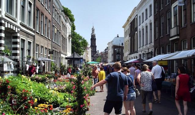 Tuin- en landgoedplanten op de Meimarkt in Zutphen. Foto: Richard Heeringa
