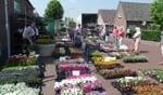 Jeroen Alberts deed met zijn bloemen goede handel op de Meimarkt. Foto: Jan Hendriksen,