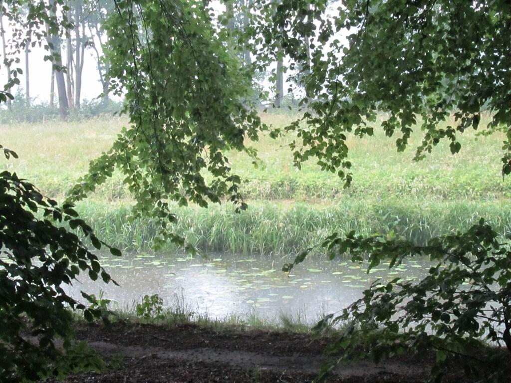 De Keizersbeek recht voor het bankje. Foto: Bernhard Harfsterkamp  © Achterhoek Nieuws b.v.