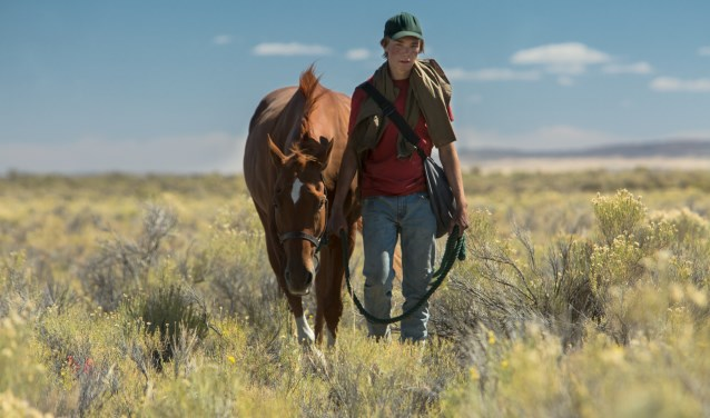 Lean on Pete is te zien in Filmhuis Barghse Huus. Foto: PR