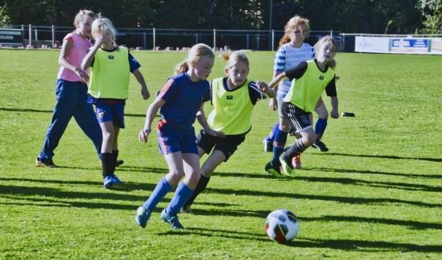 De meiden leerden diverse techniekoefeningen. Foto: Gerrie Evers, clubfotograaf zelos