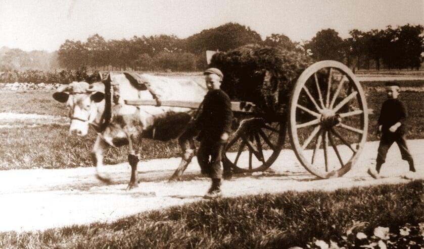 'Boern van Gistern, Alles geet veurbi'j'.Foto: Archief Staring Doetinchem