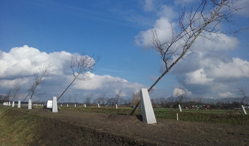 Het Witte Lint in Zutphen. Foto: PR