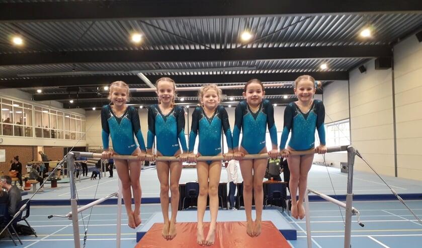Met succes namen de vijf RGV leden uit Ruurlo deel aan de wedstrijd. Foto: PR.