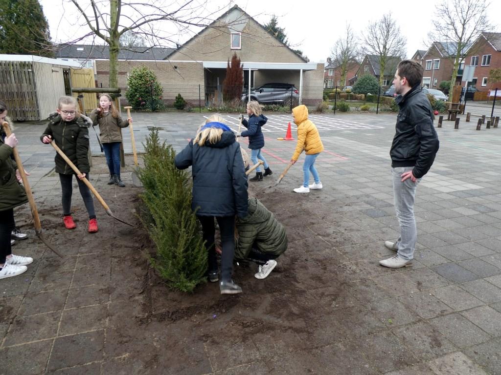 Wethouder Hofman kijkt toe hoe leerlingen van 't Loo in Zelhem hun schoolterrein vergroenen. Foto: Dick van Hoffen