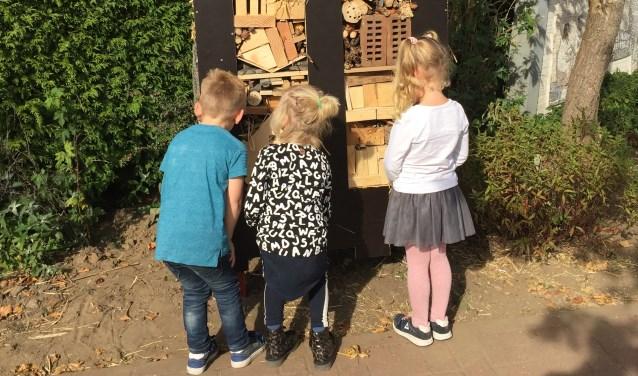 Men kan hobby's delen met de kinderen, bijvoorbeeld door ze meer bij de natuur te betrekken. Foto: PR