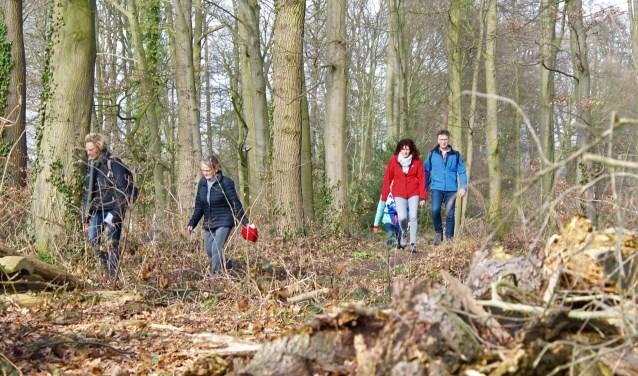 Wandelen in Winterswijk tijdens de 62ste Rode Kruis Wandeltocht. Foto: PR