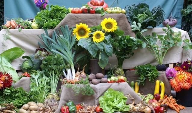 Groente uit eigen tuin. Foto: Jan Kuiperij