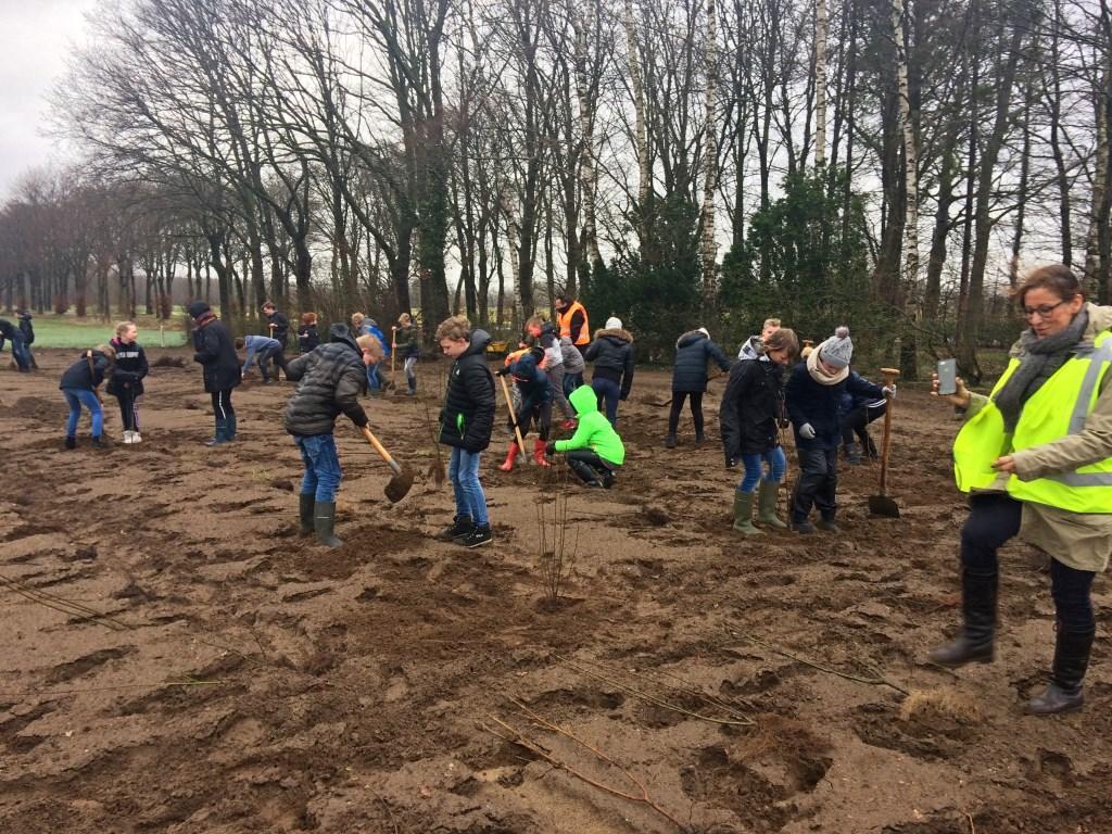 Aan de Krommedijk in Hengelo plantten in totaal 47 leerlingen van de basisscholen in Bekveld en Toldijk lijsterbessen en heel veel struiken onder leiding van hovenier Ivo Woerts. Foto: Diny Vink  © Achterhoek Nieuws b.v.