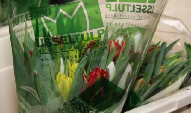 Lionsclub Bronckhorst houdt tulpenactie in de maand maart. Foto: Liesbeth Spaansen