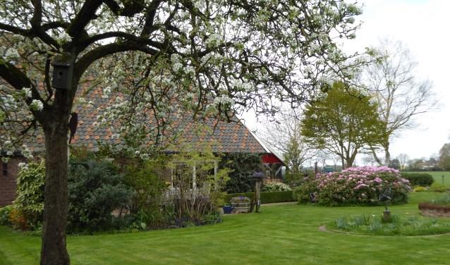 De heesters bloeien in de tuin van 't Meihuus. Foto: PR
