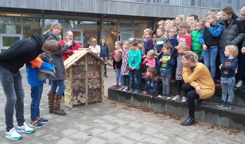 Leerlingen van de Piersonschool bekijken het insectenhotel, gemaakt in park de Bleijke. Foto: Dinie Ruesink