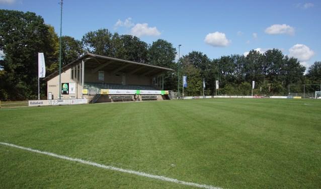Het hoofdveld van sv Dinxperlo, met de tribune. Foto: Frank Vinkenvleugel