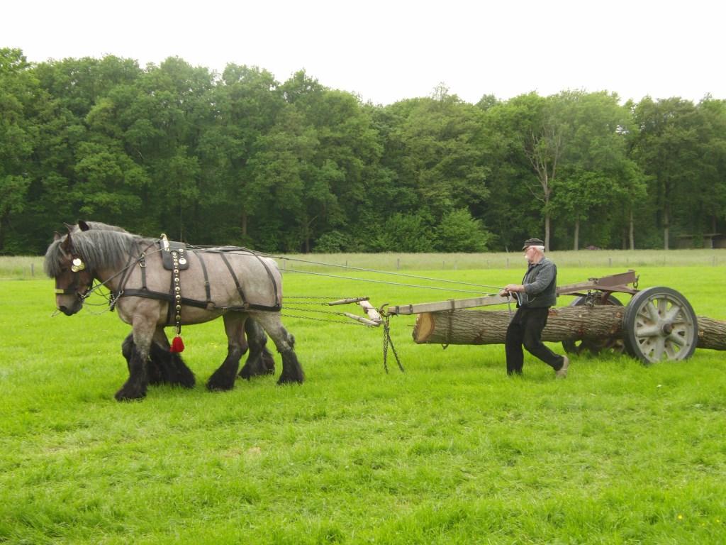 Ook de manier waarop vroeger hout werd vervoerd, wordt getoond. Foto: PR  © Achterhoek Nieuws b.v.