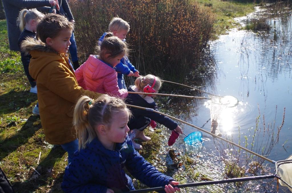 Vissen naar waterbeestjes. Foto: PR  © Achterhoek Nieuws b.v.