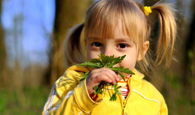 Kinderwandeling. Foto: Geldersch Landschap & Kasteelen