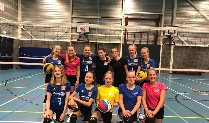 Volley Chicks lopen mee in SamenLoop voor Hoop. Foto: eigen foto